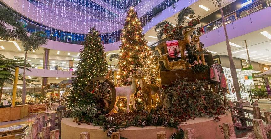 carrusel-magico-plaza-palmas-galeria-navidad-el-tesoro-06